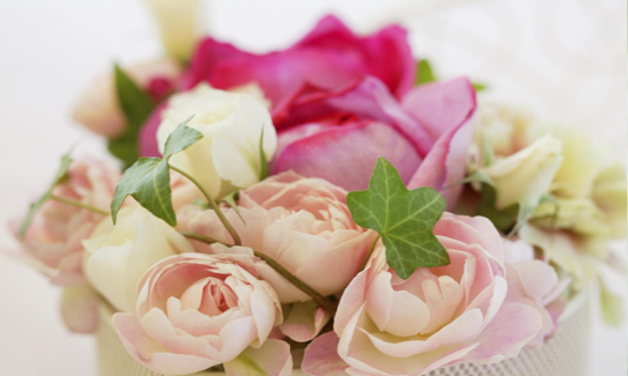 豊島区池袋の結婚相談所お見合いイメージ花